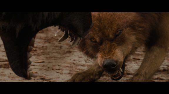 The Twilight Saga: Breaking Dawn - Part 1 | Home Cinema Choice